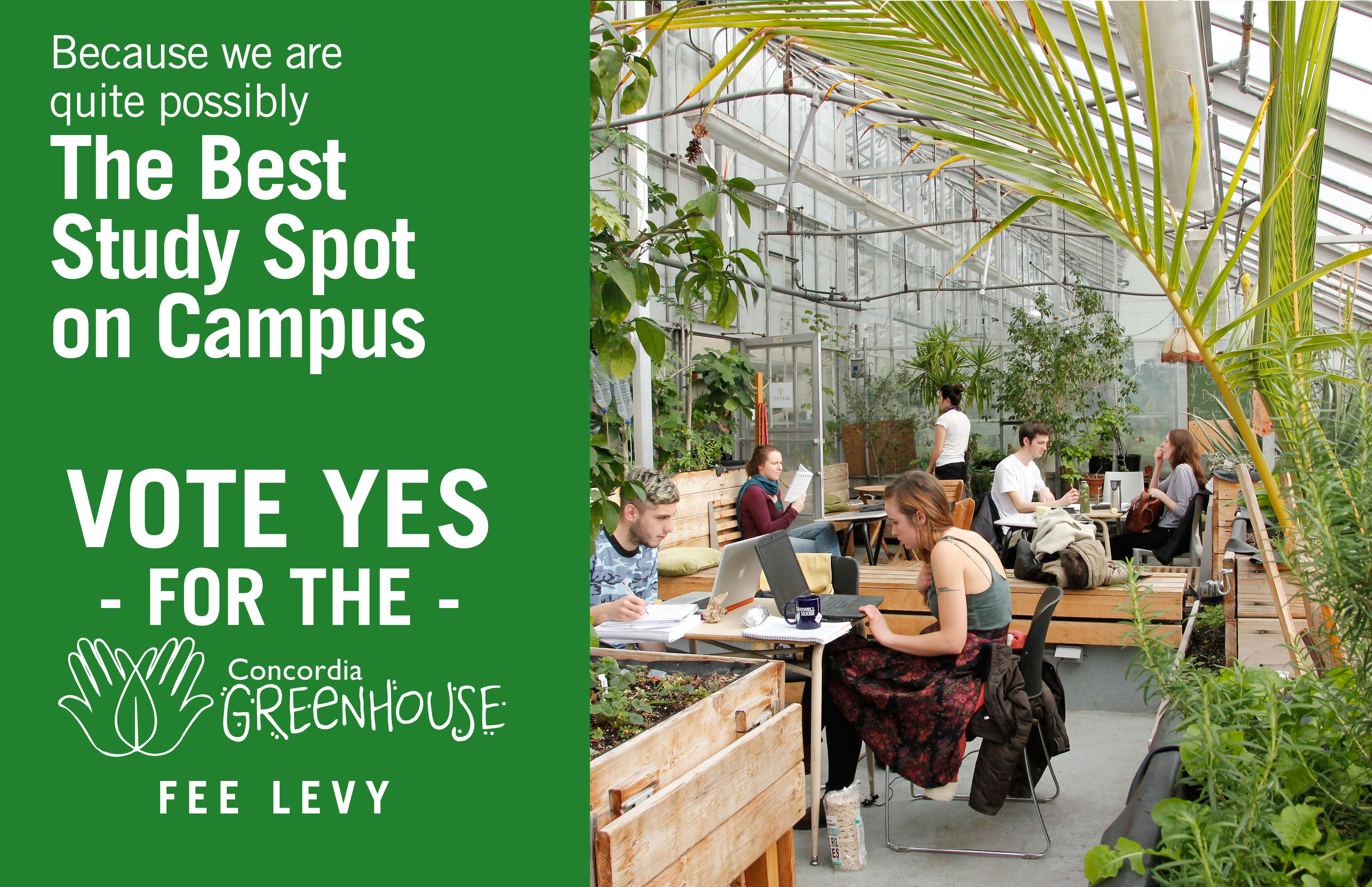 What People Have To Say About The Greenhouse The