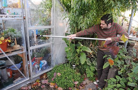 Martyn Cox feature on cleaning, insulating and heating greenhouses. 12/11/08 pic lynn hilton