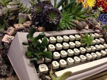 keyboard-plant.jpg