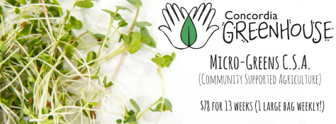 micro-greens-c-s-a
