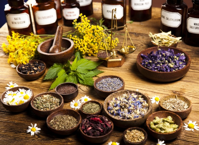 Urban Herbalism