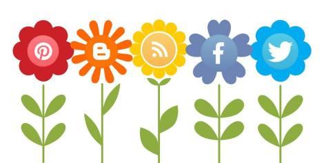 social media eco.jpg